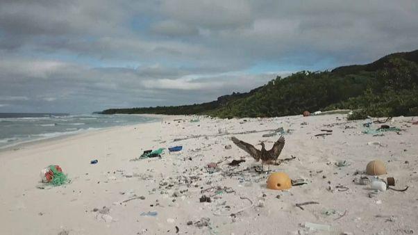 Le plastique étouffe une île paradisiaque du Pacifique