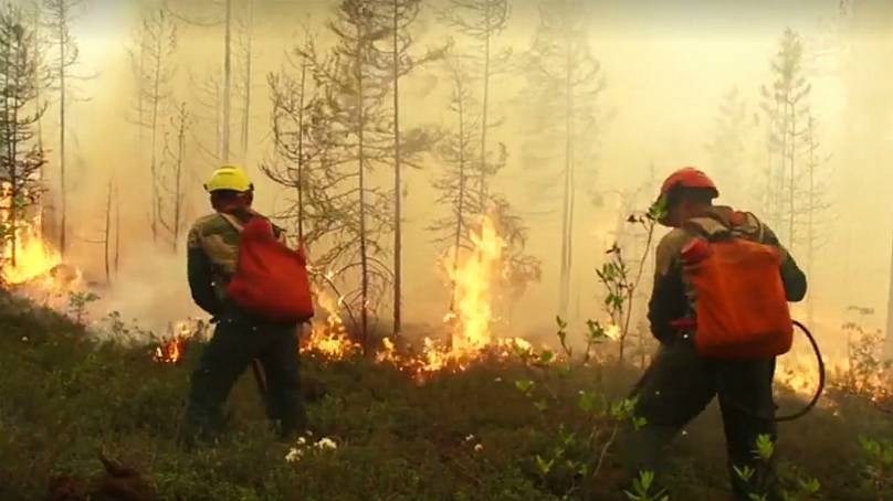 Low chance' Siberia wildfires will be brought under control