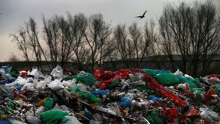 Endonezya yedi konteyner dolusu çöpü Fransa ve Hong Kong'a geri gönderdi