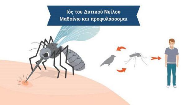 2 νεκροί - 25 κρούσματα από τον ιό του Δυτικού Νείλου