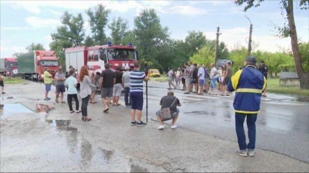 Rechazo entre los búlgaros a sacrificar cerdos
