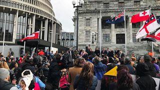 Yeni Zelanda: Yerli halk Maoriler 'çalınan çocukları' için eylem yaptı