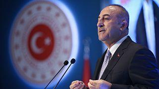 Çavuşoğlu: Doğu Akdeniz'e ilgi duyanlar bizimle iş birliği zemininde buluşsun