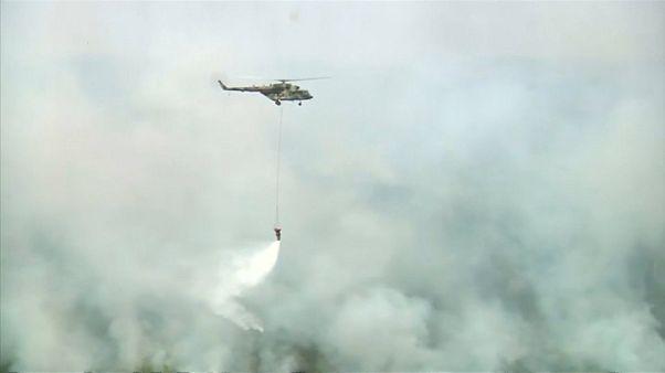 Waldbrände in Sibirien: Erste Erfolge