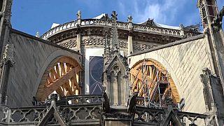 Grupos ecologistas exigen medidas de protección por la contaminación en Notre Dame