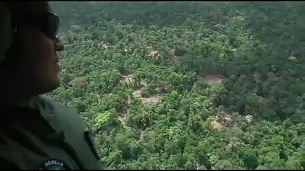 Megháromszorozódott az amazonasi erdők irtása