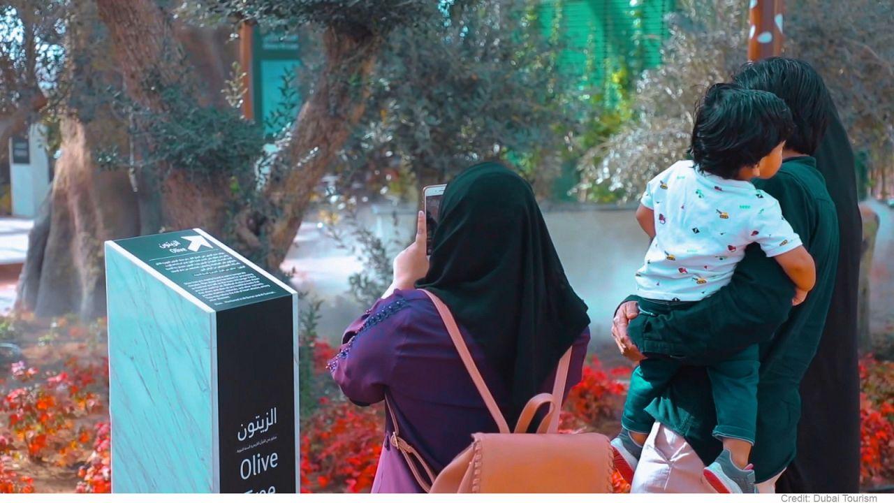 Dubai'de 'Gelecek', 'Kahve' ve 'Parfüm' müzelerinden Kur'an Parkı'na farklı seçenekler
