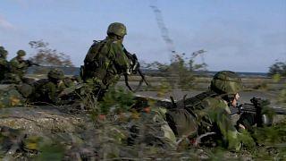 Un esercito europeo per quando? L'Europa a un bivio