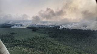 Incendi in Siberia: ministero ottimista, Greenpeace pessimista