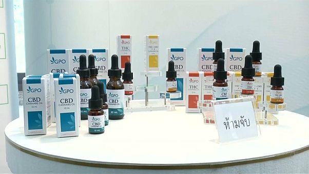 """تايلاند تبدأ توزيع """"الماريجوانا""""على المستشفيات"""