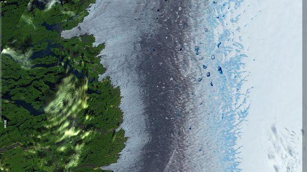 Hitzewelle: Vorher-Nachher-Bilder zeigen die schnelle Eisschmelze Grönlands aus dem All