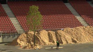Los árboles sustituyen a los goles en un estadio austriaco