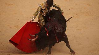 Las corridas de toros vuelven a Baleares después de que el TC levantase su prohibición