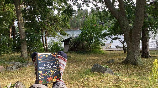 İsveç'teki bu adada sanatını icra eden ve fikir geliştirenler 1 hafta ücretsiz kalabiliyor