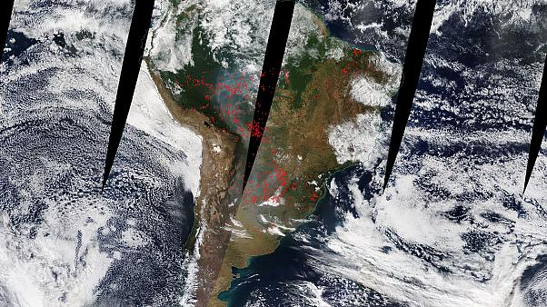 Brazil: State of Amazonas declares state of emergency over rising number of forest fires