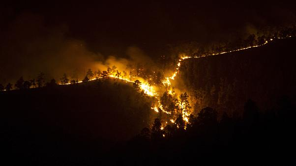 Wildfire forces evacuation of about 1,000 people in Spain's Canary Islands