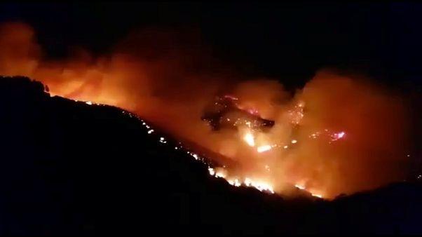 El viento nocturno descontrola de nuevo el fuego que arrasa las cumbres de Gran Canaria en España