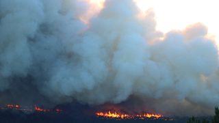 Kütahya'nın Tavşanlı ilçesinde çıkan orman yangınına müdahale ediliyor. ( Muharrem Cin - Anadolu Ajansı )