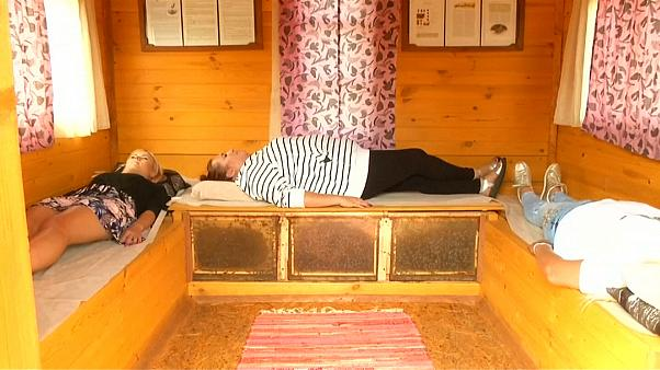 """شاهد: """"النوم مع النحل"""" طريقة جديدة للعلاج وتخفيف الآلام"""