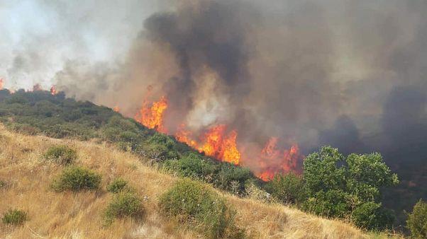 Υπό πλήρη έλεγχο η φωτιά στη Λεμεσό