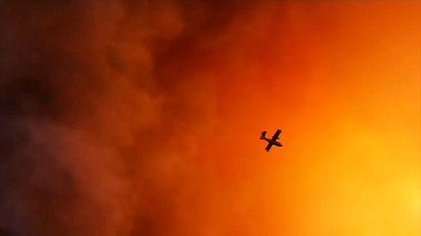 Incêndio de grandes dimensões na ilha grega de Evia