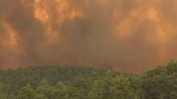 Пожар на острове Эвбея
