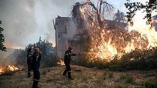 Φωτιά στην Εύβοια: Μάχη με τις φλόγες