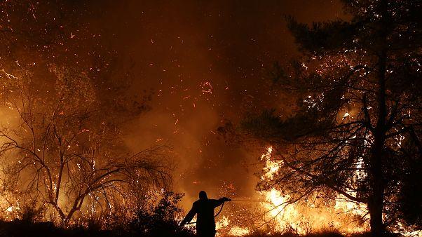 Yunanistan: Eğriboz Adası'ndaki orman yangını ikinci gününde de kontrol altına alınamadı