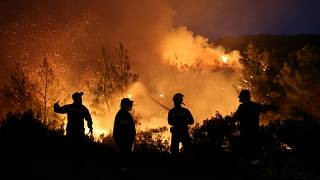 Firefighters try to extinguish a wildfire burning near the village of Makrimalli on the island of Evia, Greece, August 13, 2019.