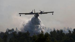 Εύβοια: Συνεχίζεται για 2η μέρα η μάχη με τις φλόγες