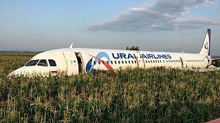شاهد: طيور النورس تجبر طائرة ركاب روسية على الهبوط اضطراريا في حقل ذرة