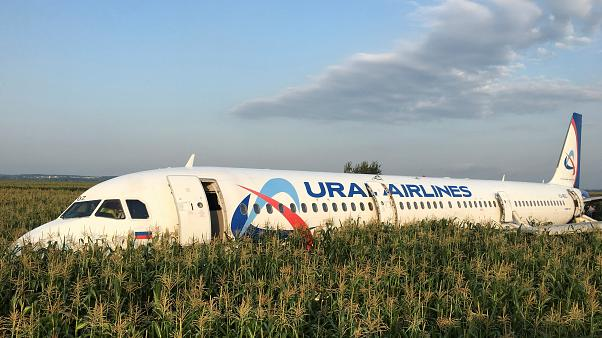 Russian plane crash-lands in field after bird strike, no casualties reported