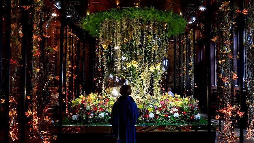 جشنواره سبز در بلژیک؛ بروکسل به گل آراسته شد