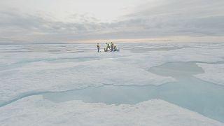 Científicos conmocionados al encontrar microesferas de plástico en el remoto hielo del Ártico