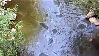 Ivanjica in Westserbien droht eine Umweltkatastrophe