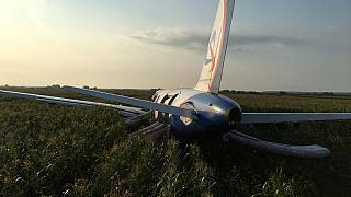 En Russie, un Airbus atterrit d'urgence dans un champ