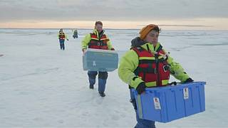 The Brief: High levels of microplastics found in Arctic snow