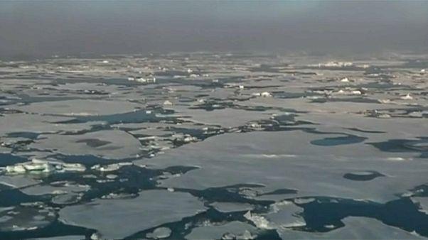 Isole Svalbard: frammenti di plastica e gomma nella neve