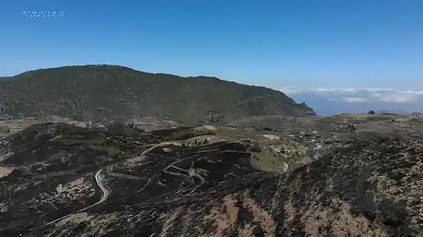 Gran Canaria's UNESCO archaeological zone ravaged by wildfires