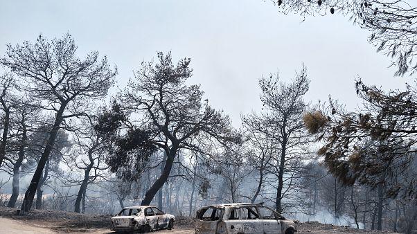 Εύβοια: Όλα τα ενδεχόμενα ανοιχτά για τα αίτια της φωτιάς