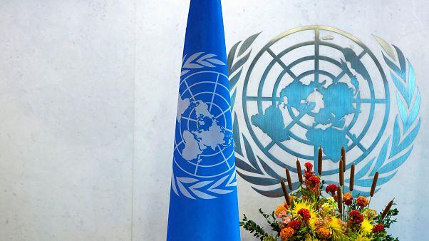انتقادات تطال الأمم المتحدة بعد إعلانها عن عقد مؤتمر حول التعذيب في مصر