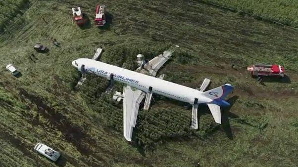 Drónfelvétel az Ural Airlines Airbusáról egy Moszkva melletti kukoricásban