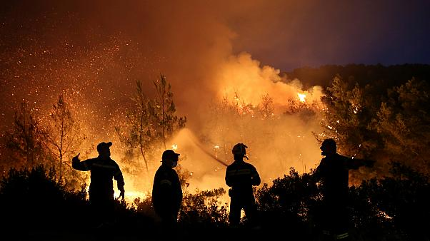 Tüzet oltanak Makrimalli falu mellett, a görög Évia szigetén