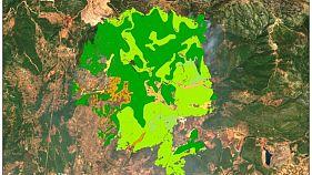 Τι κάηκε στην Εύβοια- Δορυφορική καταγραφή της καταστροφής