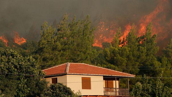 İzmir ve Muğla'daki orman yangınları büyüyor: Bazı köyler tedbir amaçlı boşaltıldı