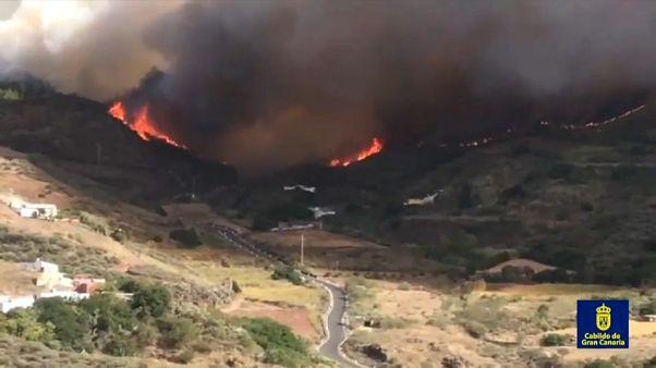 Пожары на Гран-Канарии не утихают