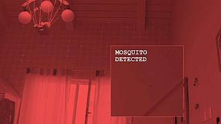 The laser system identifies mosquitoes using their movement patterns