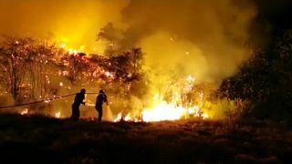 Kanarya Adaları'nda orman yangınları rüzgarın etkisiyle yayılıyor