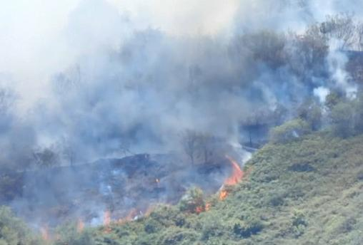 The fire is affecting the mountainous central part of the island