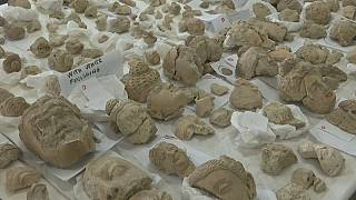 The Taliban destroyed 2,500 statues in the museum's collection